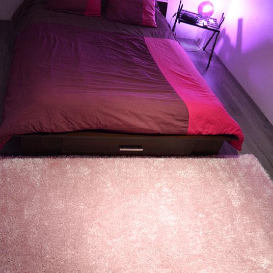 tapis sunny shaggy poils longs rose p le tapis shaggy poils longs acheter en ligne. Black Bedroom Furniture Sets. Home Design Ideas